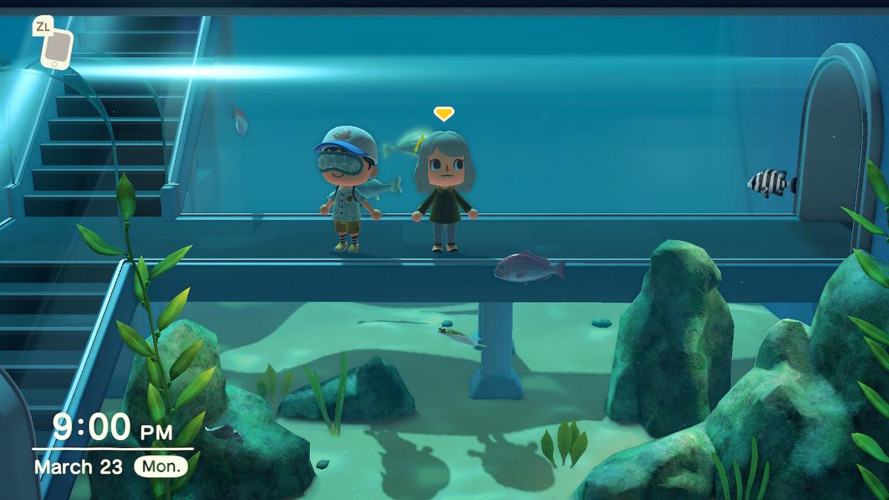 Animal Crossing New Horizons Fish Exhibit in Museum